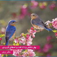 بهار دلکش و 27 لغت و اصطلاح کاربردی