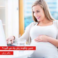 جنین چگونه زبان یاد می گیرد؟